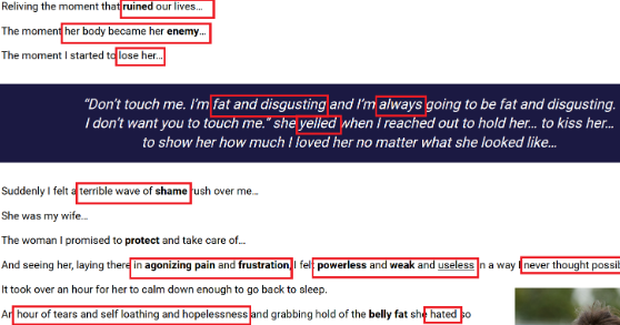 Flat Belly Fix: Sales & Persuasion Tactics Exposed